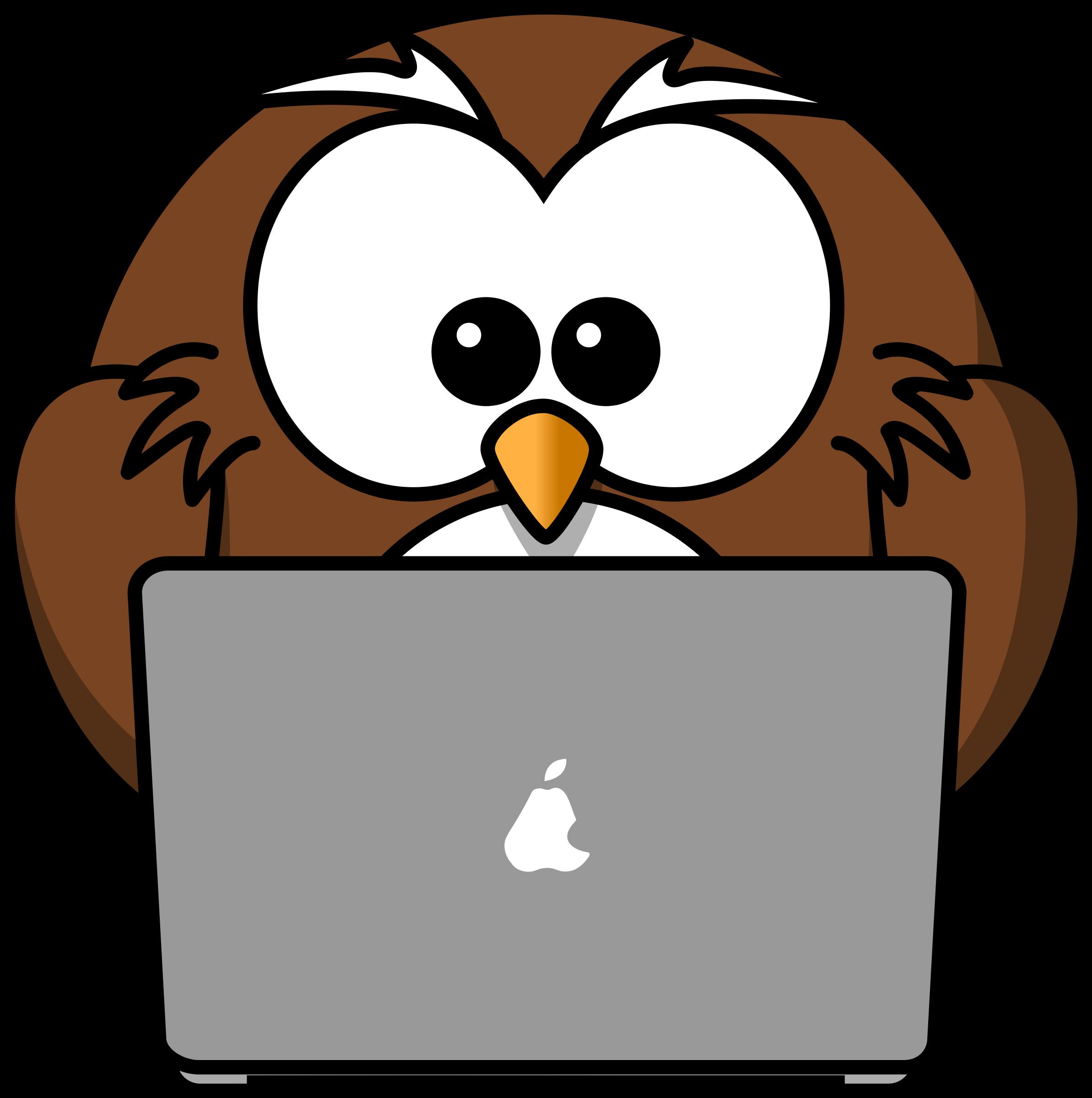 owl-home-4