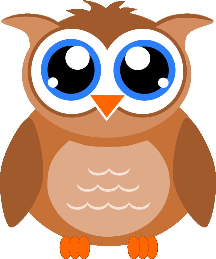 owl-home-6