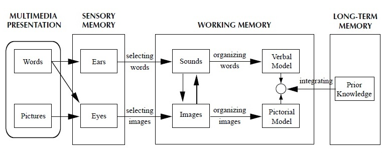Information Processing Research Paper