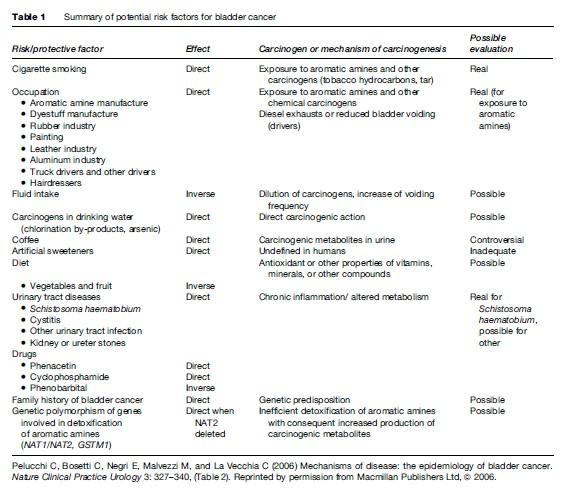Bladder Cancer Research Paper