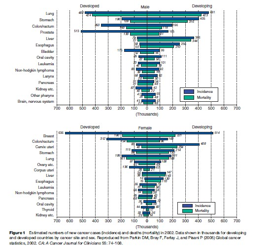 Cancer Epidemiology Research Paper