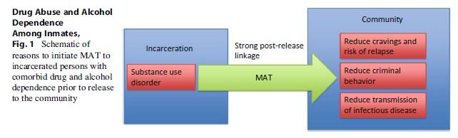 Term paper about drug addiction