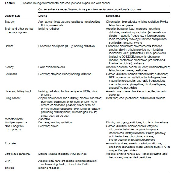 Environmental Carcinogens Research Paper