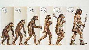 Evolution Research Paper Topics