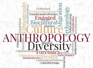 Theory in Anthropology Research Paper Topics