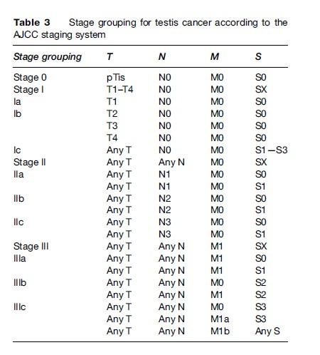 Testicular Cancer Research Paper
