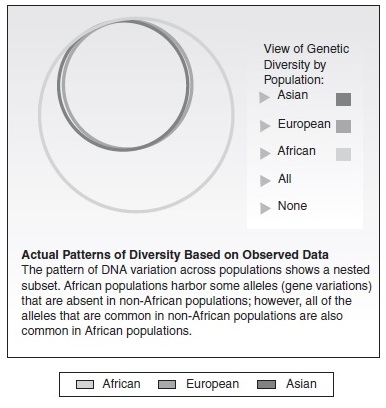 Race and Racism Research Paper