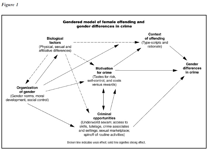 Gender and Crime Research Paper Figure 1