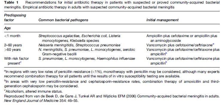 Bacterial Meningitis Research Paper