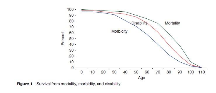 Elderly Health Research Paper