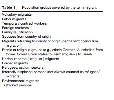 Migrants' Health Research Paper