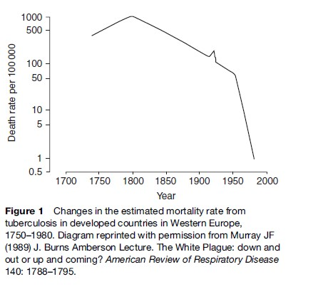 Tuberculosis Research Paper