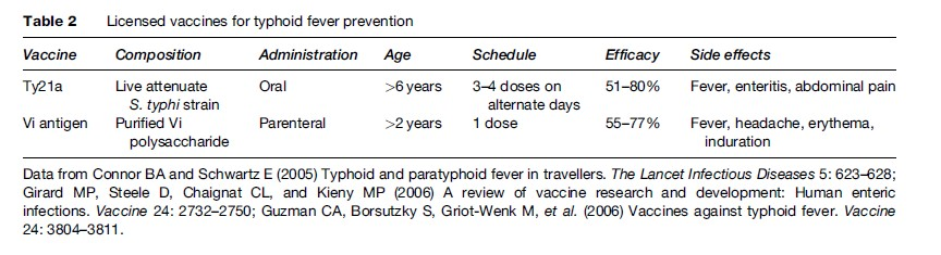 Typhoid Fever Research Paper
