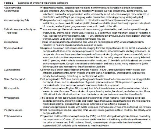 Waterborne Diseases Research Paper